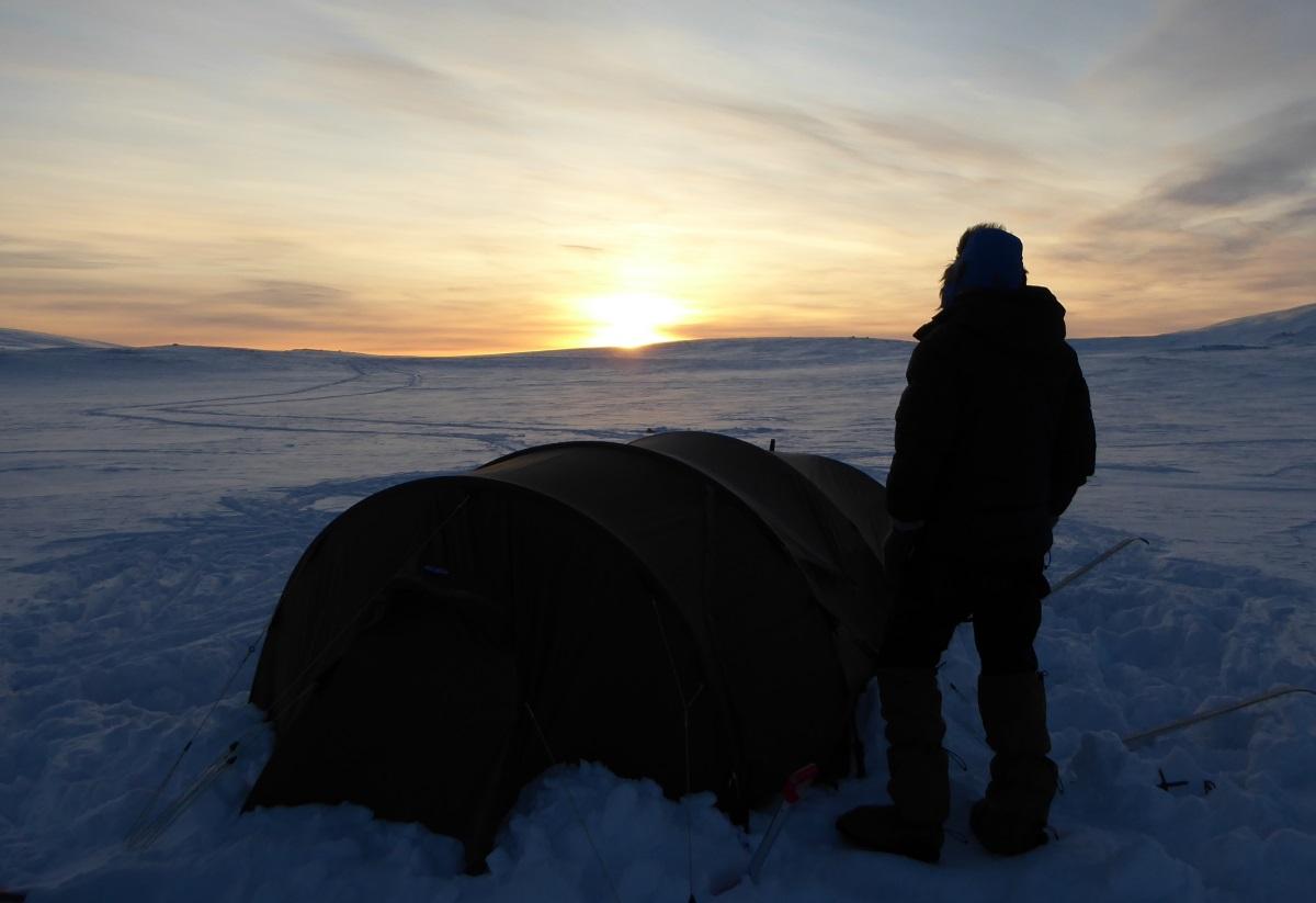 Villmarksliv i nord