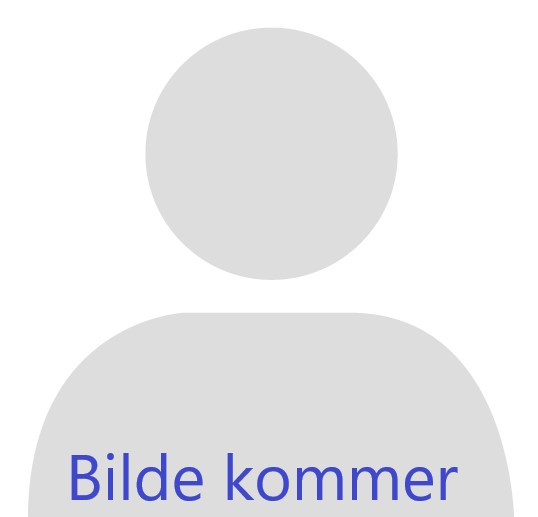 Børge H. Eilertsen